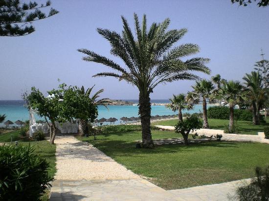 Nissi Beach Resort : Giardino