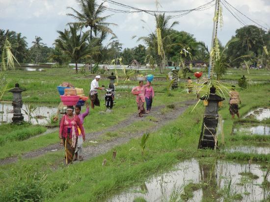 Villa Puri Darma Agung: Women in Festival mood