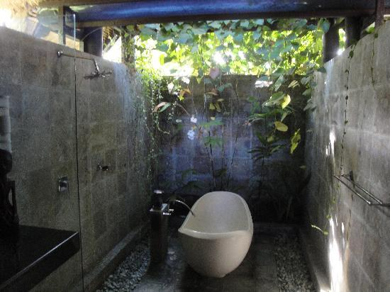 Villa Puri Darma Agung: The Balinese bathroom