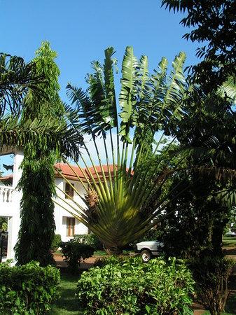 Marangu, Tanzania: kleine Impression vom Hotel