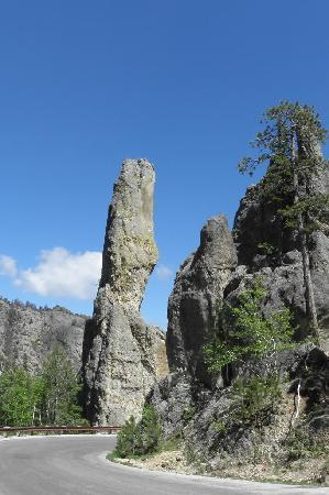 Peter Norbeck Scenic Byway : Needles Highway