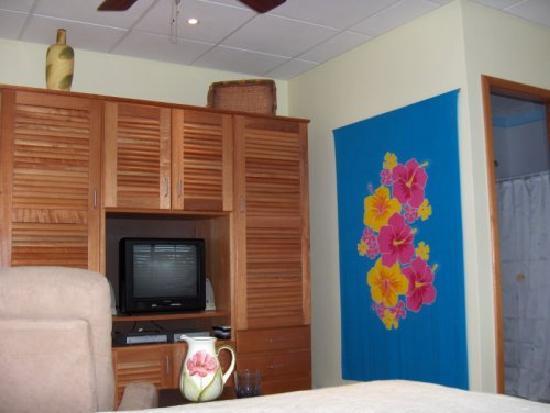 Bocas Condos: Satellite TV