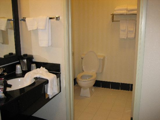 Fairfield Inn & Suites Spearfish: hotel bathroom