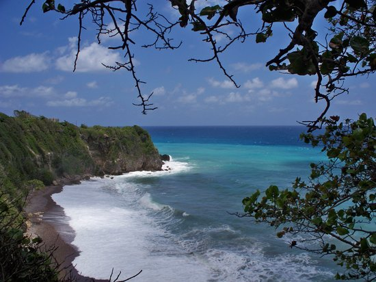 "Know Jamaica Tours: The ""Secret"" Location"