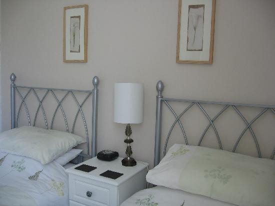 Bryn Derwen Guest House: Twin bedroom
