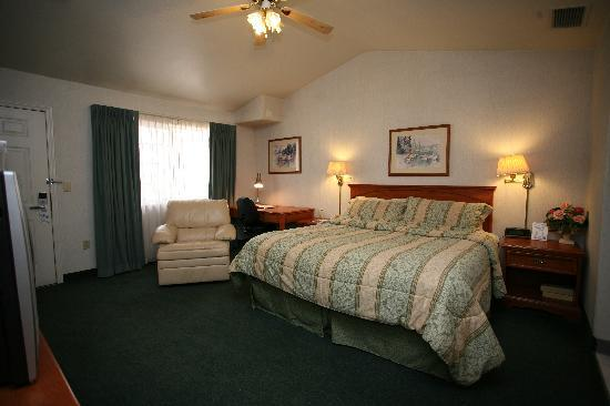 Garden Inn and Suites: One King  room