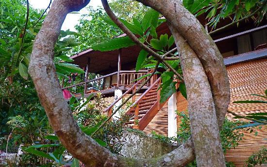 Bunaken Cha Cha Nature Resort: unnecessarily arty chalet shot