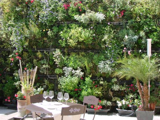 Les Jardins d'Alienor: diner dans le patio