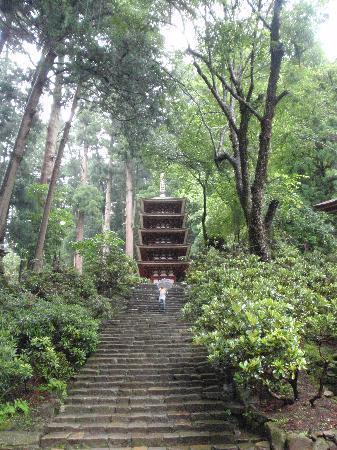 Muroji Temple: 五重塔前の石段