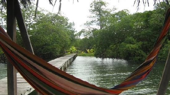 Punta Caracol Acqua Lodge: ZOna del hotel, con un vista espectacular...