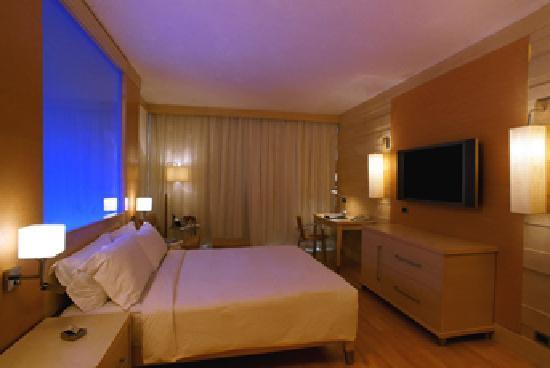 Le Meridien New Delhi: my room