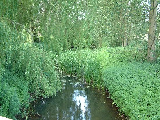 The stream at Cretingham