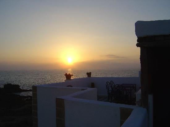 Dar Al Bahar : Terrace
