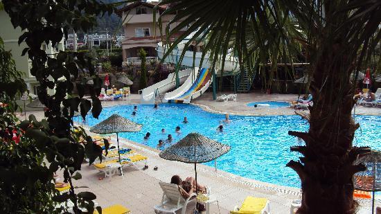 Palm Garden Apartments: Palm Garden pool