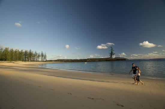 Emily Bay: Best Beach in the World!