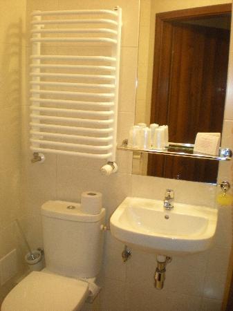 Hotel Alexander II : bagno