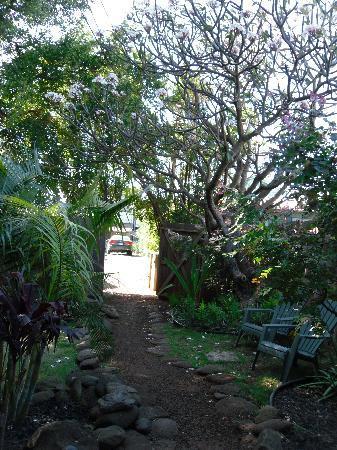 Nalu Kai Lodge: Yard at Kulia Tower
