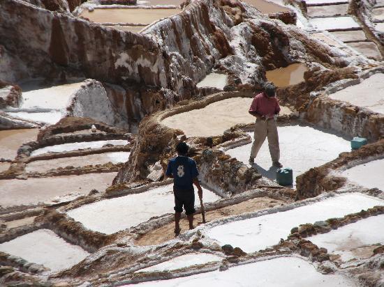 Posada Las Tres Marias: saltpans, Urubamba