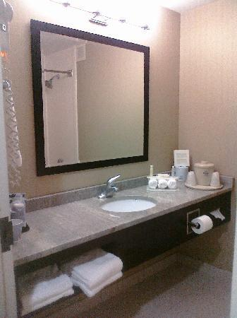 Holiday Inn Express Anderson: Very Clean Bathroom