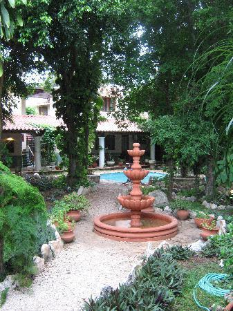Casa Quetzal: Le jardin