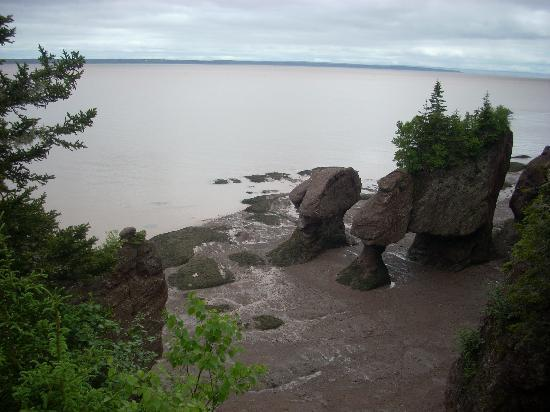 Rhodes Manor B & B: Hopewell Rocks