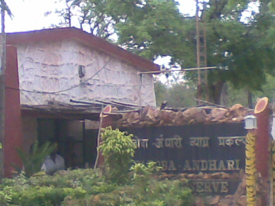 Chandrapur District 사진