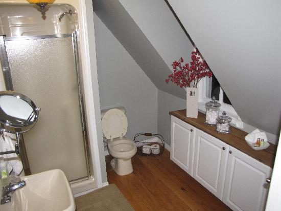 Iron Kettle B&B: Private washroom.