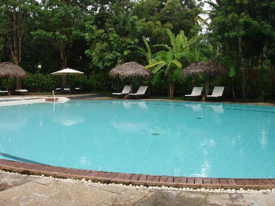 Vivanta by Taj - Kumarakom : The pool was great :)