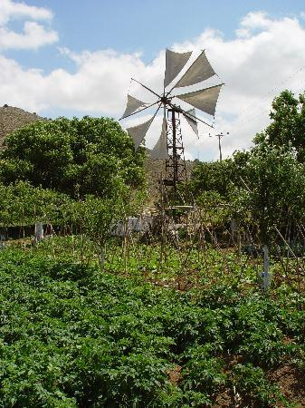 Lasithi Prefecture, Greece: Typical windmill used to extract water for agriculture