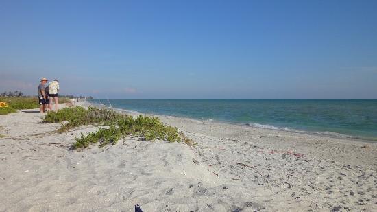 Bowman S Beach Picture Of Sanibel Island Tripadvisor