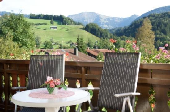 Hotel Muehlenhof: Ausblick von Zimmer 21