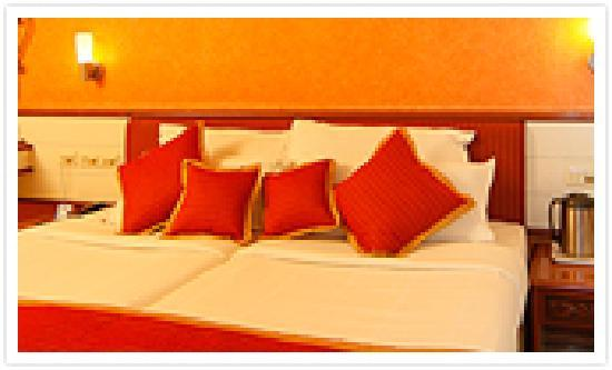 Hotel Shree Panchratna: room