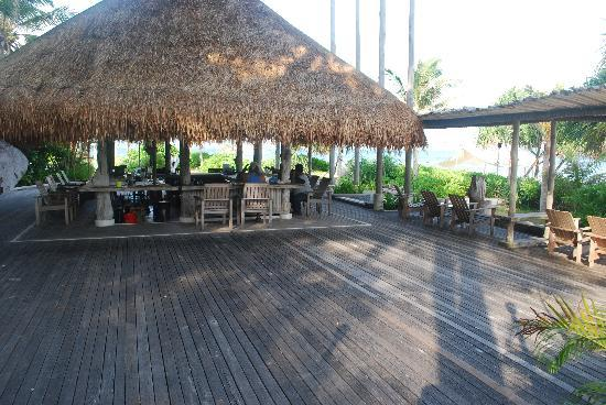 Nikoi Island: Yogi's Bar