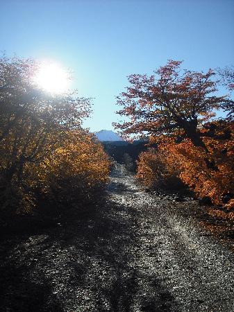 Los Andes, Chili: Trekking und wandern in Las Trancas nahe Concepción