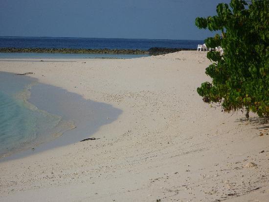 Kuramathi Island Resort: la plage