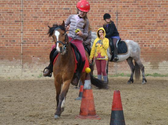 poney club EQUITOONS: pony games