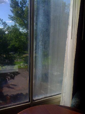 BEST WESTERN Sovereign Hotel - Albany: Window has some water damage.