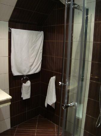 Forum Hotel: shower