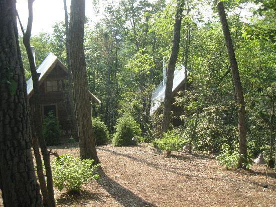 Cheshire Cabin & Treehouse Rentals: view of cabins from top of hill