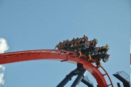 Busch Gardens Tampa: The Sheikra is a fun ride