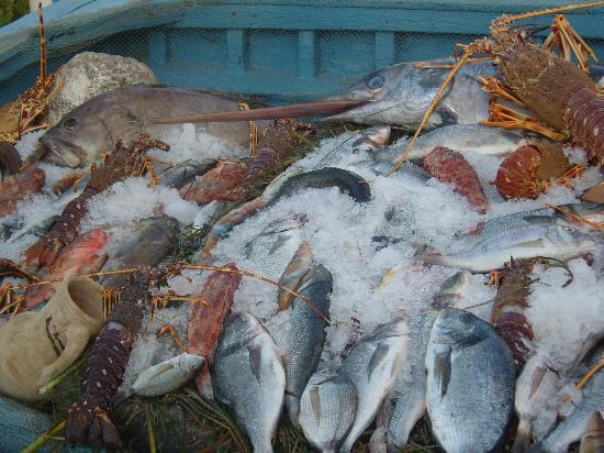 Les Emirs : barque a poisson