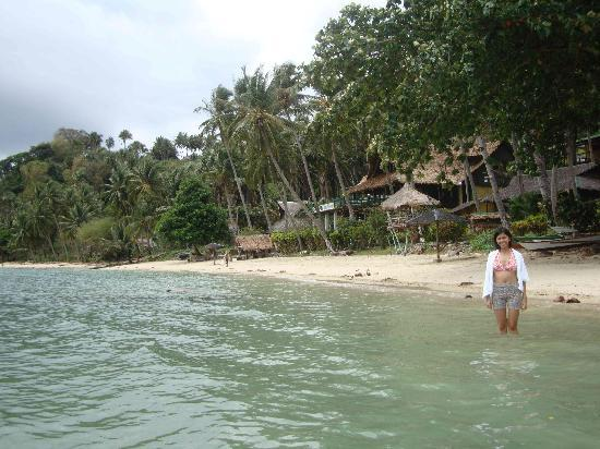Dolphinbay Beachfront  & Dive Resort: the short beach-cove