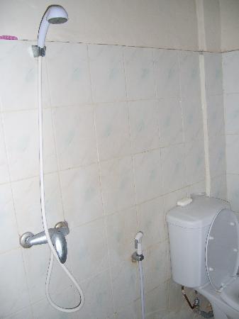 Sarinande Hotel: Shower next to toilet