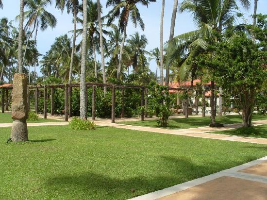 Serene Pavilions: Gardens