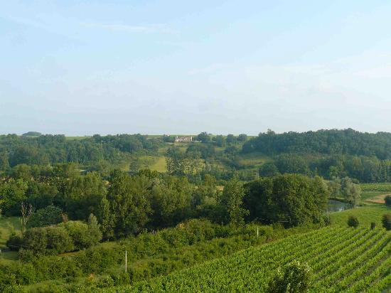 Chateau Isabeau de Naujan: Vue de notre chambre