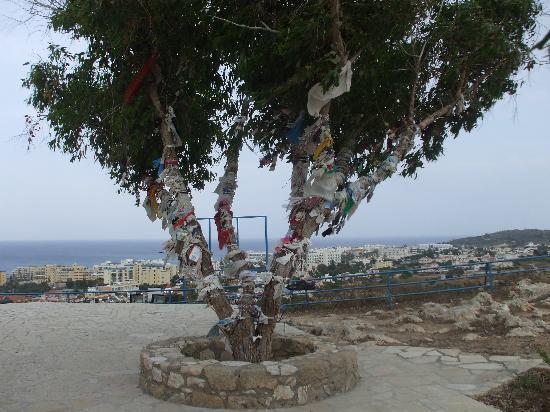 Golden Coast Beach Hotel: must visit here