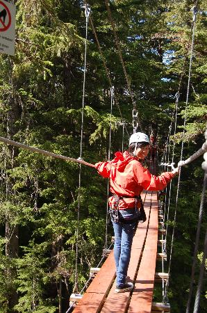 Alaska Zipline Adventures: suspended bridge