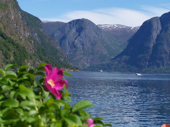 Fretheim Fjordhytter: The amazing view