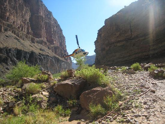 Grand Canyon-Parashant National Monument, AZ: Helicopter to Canyon Floor