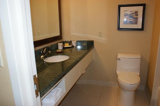Bridgewater Marriott : A poor shot of the bathroom sorry